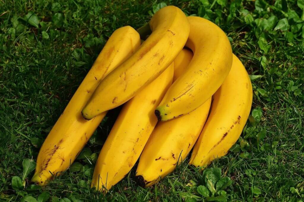 Bananen was kann das gesund und fit leben