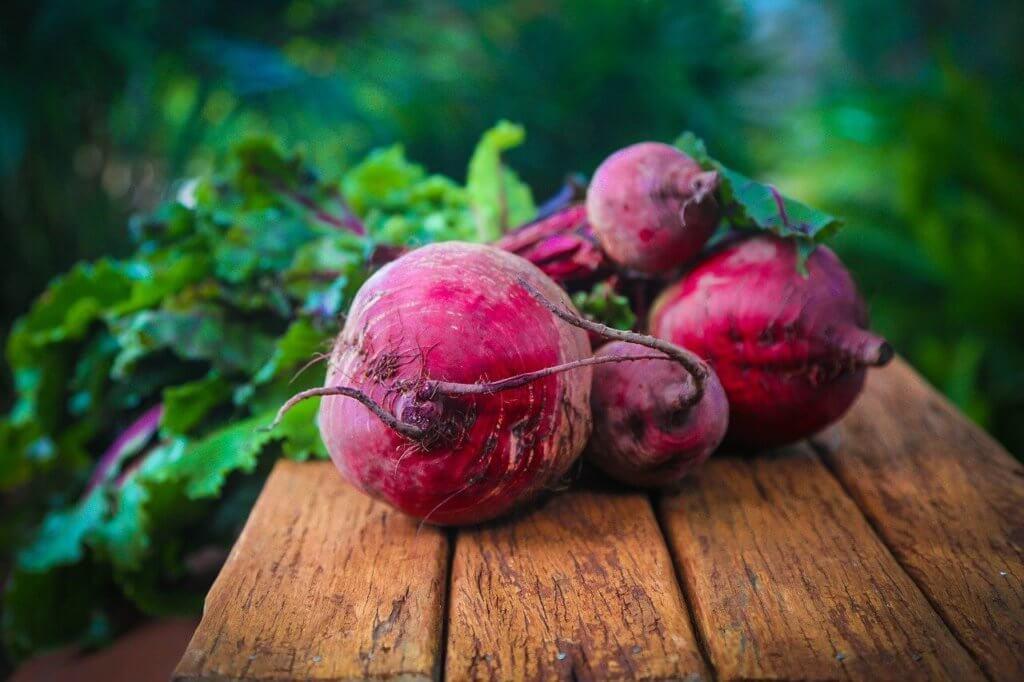 Rote Beete was kann das gesund und fit leben