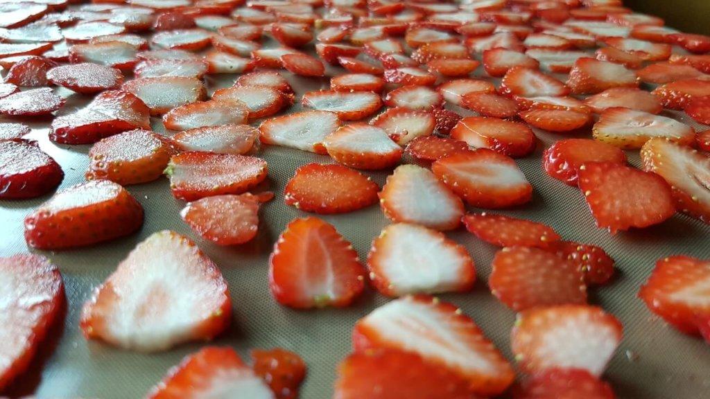 erdbeeren-trockung-dauer-dörrautomat-kaufen